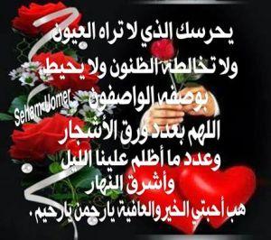 10ccb6d31 فبراير | 2018 | ~~~~~ بسم الله الرحمن الرحيم ~~~~~