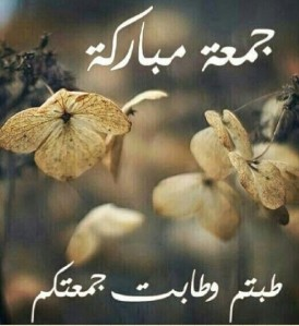 a32d3d07b بسم الله الرحمن الرحيم ~~~~~ | …Keep in touch with the latest ...